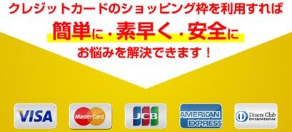 エージェントの対応クレジットカード
